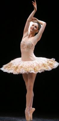 DANCE ACADEMY (4)